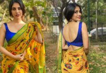Nabha Natesh Beautiful Saree Looks