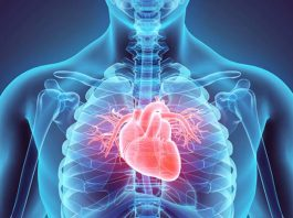 best food to avoid heart related diseases