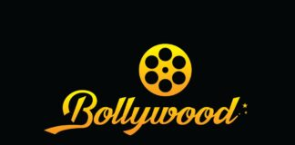 Akkineni Heroes Want to Rock in Bollywood