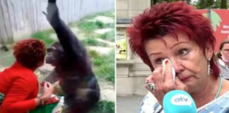 Woman Banned from Visiting Zoo