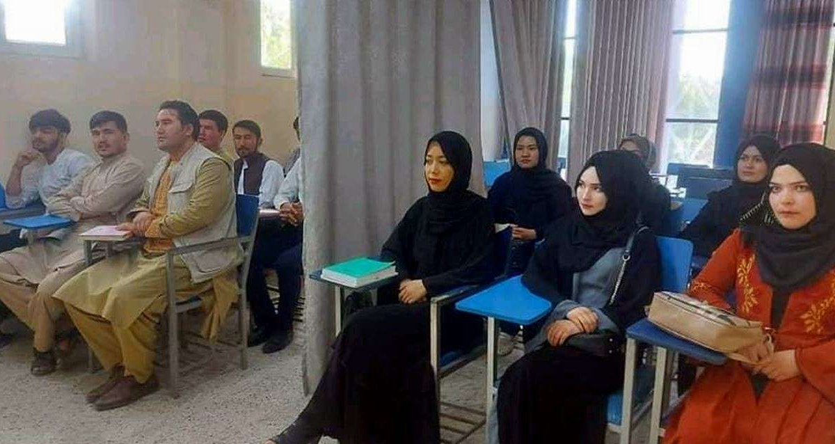 Men, women students separated by curtain in Afghan college class under Taliban rule