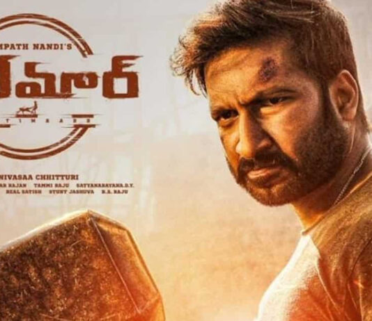 Seetimaar movie 2nd day Box Office Collections